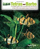Tetras and Barbs: The Complete Guide to the...