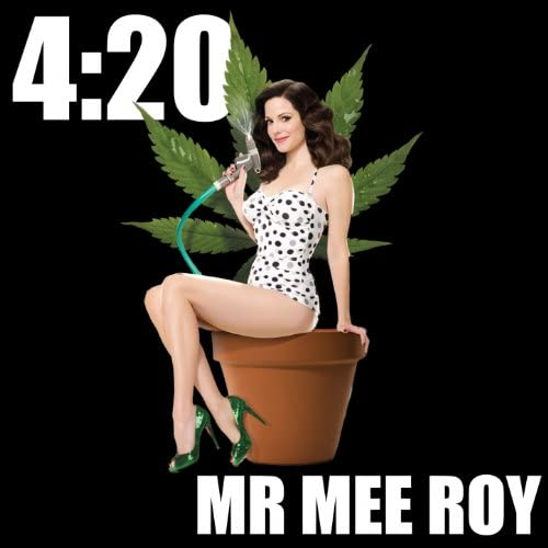 Mr. Mee Roy