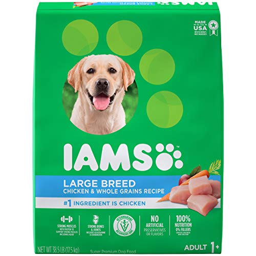 IAMS PROACTIVE HEALTH Adult High Protein Large Breed Dry Dog Food with Real Chicken 385 lb Bag