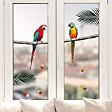 Pixblick Fenstersticker - Papageien