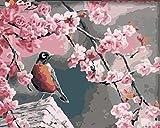 Pintura digital de bricolaje-lienzo preimpreso para adultos regalo de pintura al óleo para niños set decoración de la casa familiar-pájaro flor de durazno 40x50 cm (con marco)