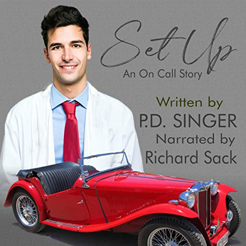 Set Up Audiobook By P.D. Singer cover art