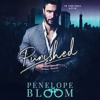 Punished audiobook cover art