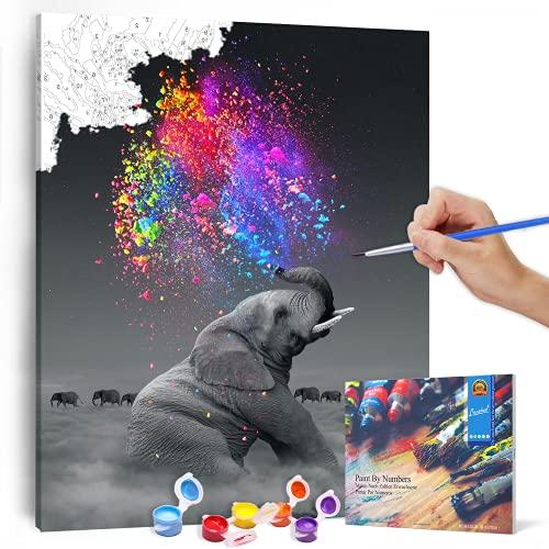 Bougimal Malen Nach Zahlen Erwachsene Tiere mit Rahmen inklusive Pinsel und Acrylfarben - 40 x 50 cm, Elefant