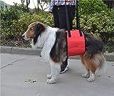 Pet Dog Action Assist Cinturón Correa Para Perros Cinturón Portátil Para Perros Correa Para El Pecho-Rojo Arnes Perro Displasia Silla De Ruedas Para Perros Arnes De Pecho Perro Carrito Perro Arnes