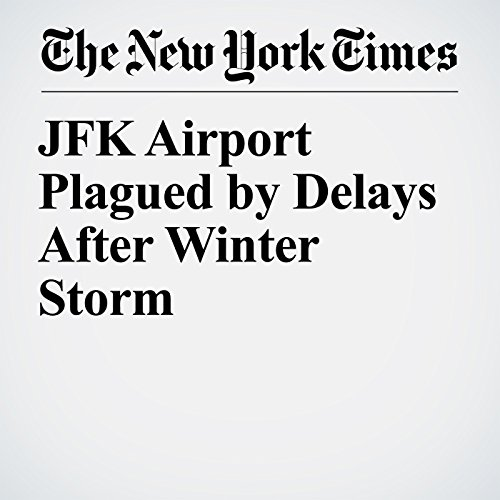 JFK Airport Plagued by Delays After Winter Storm copertina