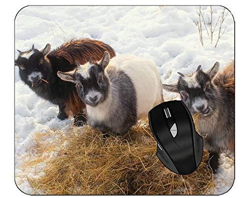 Mousepads Baby Animal Snow Animal Goat Mouse Mat