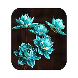 CX-5 85cm Natural DIY Hibiscus Lotus Dried Flower Wedding Decoration for Home Party Office Decorative Artificial Dried Flowers