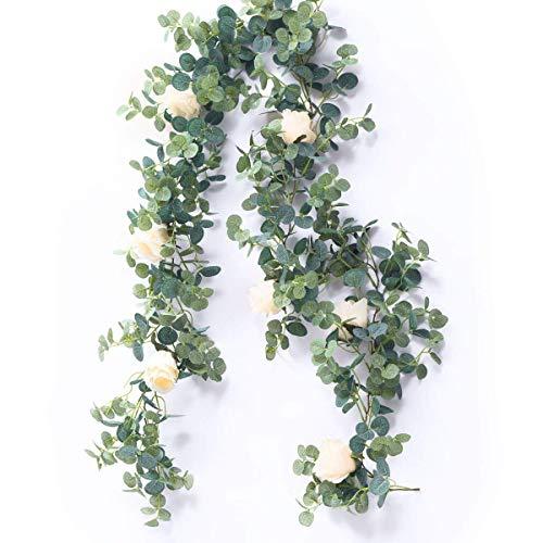 Peoxio Künstliche Eukalyptus-Girlande mit Champagner-Rosen-Grün-Girlande Eukalyptus-Blätter Hochzeits-Hintergrund-Wand-Dekor (Champagner Rose)