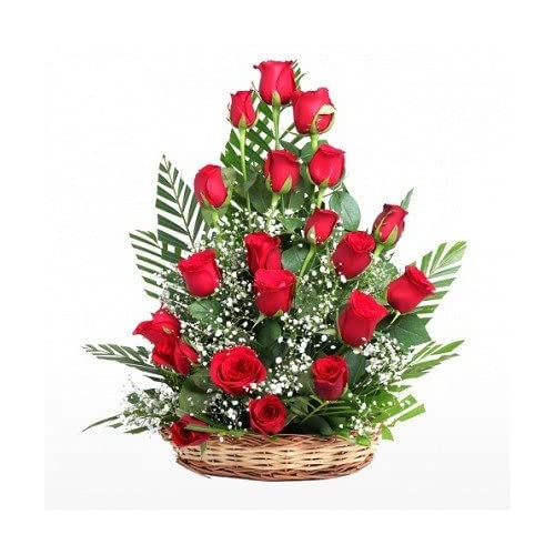 Floralbay Special Basket Arrangement with 21 Fresh Roses (Red)