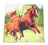 Bettwaren Kissen 40 x 40 cm mit Tiermotiv für Kinder und Erwachsene, Sitzkissen, Kopfkissen,...