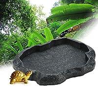 リザードボウル、ABS樹脂レプタイルボウルウォーターボウルフードボウルレプタイルフィーダー、トカゲ爬虫類湿皮用(Moyu Green, M)
