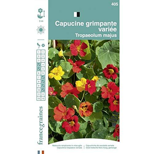France Graines - Capucine Grimpante Mix