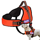 PetLove Dog Harness, Adjustable Soft Leash Padded No Pull Dog Harness for Small Medium Large Dogs, Orange