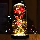 Valentine's Day Wedding Anniversary Mother's Day Birthday Party, Color 24K Light with Forever Shining Gold foil Rose Glass Cover led Gift Box Set (red Rose)