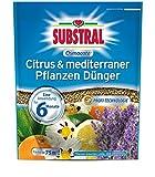 Substral Osmocote Citrus & mediterraner Pflanzen Dünger - 1,5 kg