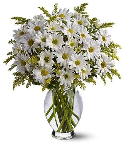 Ramo de Crisantemos naturales, añade tu dedicatoria personalizada.