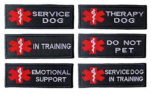 Best Dog Support Harnesses