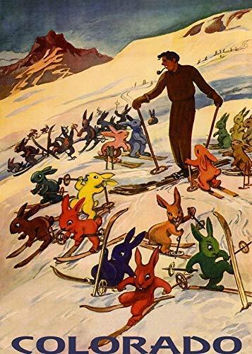 Cartel de metal con diseño de conejos de esquí, esquí, esquí, escuela, deporte, capitán, pirata, bar, pub, hombre, estacionamiento, cueva, panel de pared interior, retro, vintage, tamaño 20 x 30 cm