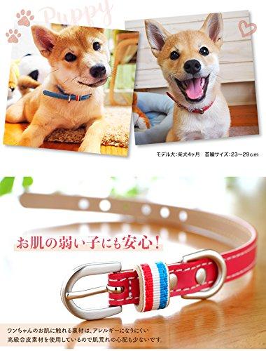 犬の首輪屋てるべる『犬の首輪』