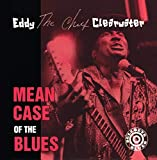 Songtexte von Eddy Clearwater - Mean Case of the Blues
