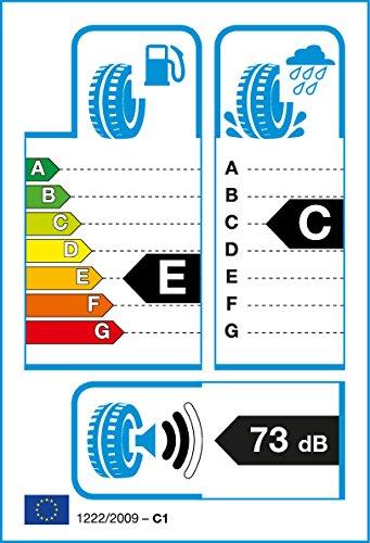 Fortuna 4154 banden voor het hele jaar, 195/70/R15 104R, E/C/73dB
