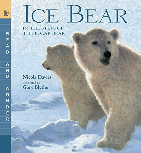 11 Fun Polar Bear Activities for Kindergarten and First Grade 1
