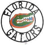 LRT SALES LLC NCAA Florida Gators Collegiate Wrought Iron Wall Decor, Black/Orange and Blue, 23-Inch