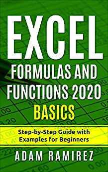 Excel Formulas and Functions 2020 Basics: Step-by-Step Guide with Examples for Beginners (Excel Academy Book 2) by [Adam Ramirez]