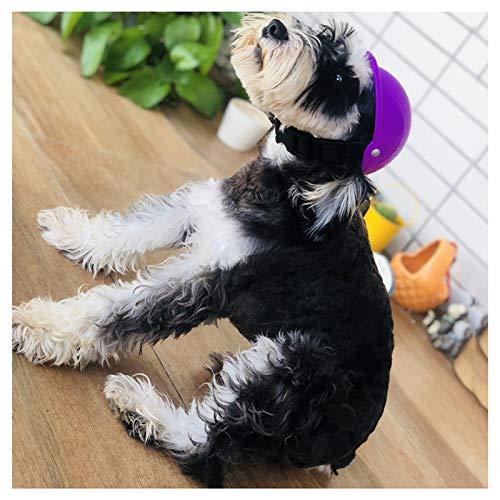 HyiFMY Casco de Perro, Cascos de plástico Frescos para Pet, protección de la Lluvia de Sol Gatos Casco de Perros, para pequeños Gatos Perros Ciclismo Ciclismo - púrpura (Size : Medium)