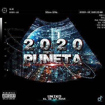 Puneta 2020
