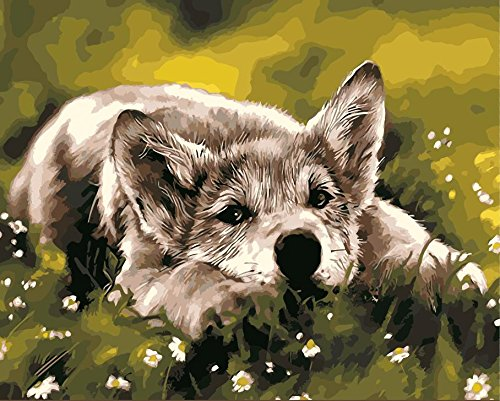 cute dogPaint By Numbers For Adults and Kids_Preprint canvas_DIY Digital Painting by Numbers Kits on Canvas_40x50cm