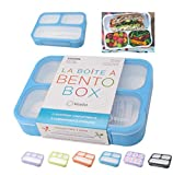 Bento Lunch Boxes for Kids, Teens, Adults | Snack Containers or Portion Control Meal Box for Lunches...