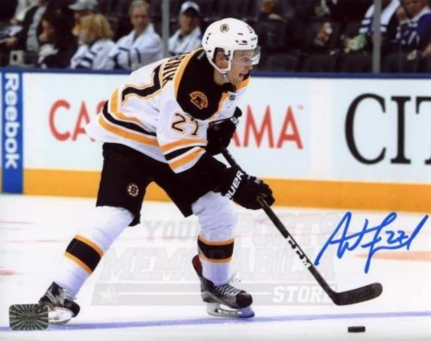 Austin Czarnik Boston Bruins Signed Autographed Away Action 8x10 H