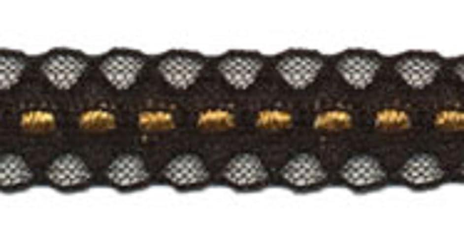 BEEKLEY BOWS Elegant Craft Sewing Raschel Galloon Lace Trim, 5 Yards (11/16