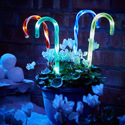 Sentik 4 Pack Battery Powered Christmas Candy Cane Pathway Garden Stake Lights Festive Outdoor Decoration (Multi Coloured)