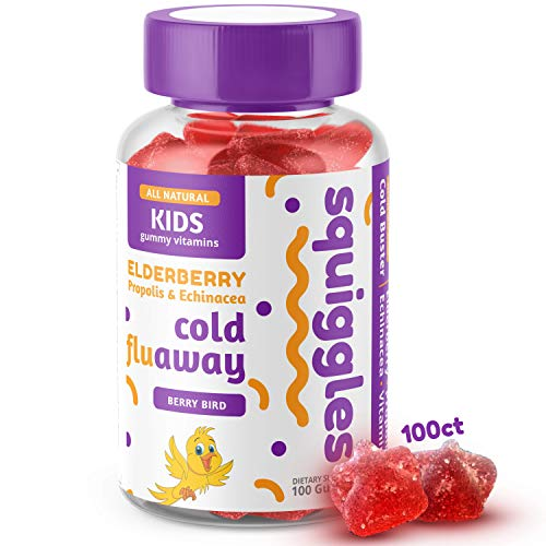 Elderberry, Bee Propolis, and Echinacea | Kids Cold Fighting Gummies by SQUIGGLES, 100 Count