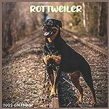 Rottweiler 2022 Calendar: Official Rottweiler Dog breed Calendar 2022, 16 Months