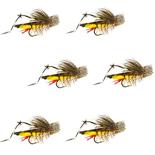 Thor Outdoor Dave's Hopper - 6 Pc Topwater Fly Fishing Set - Dry Flies...
