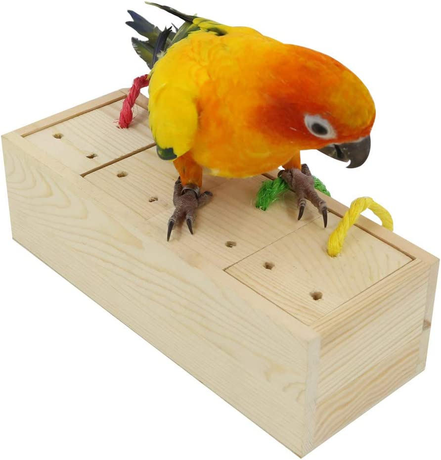 YINGGE Wooden Bird Foraging Super beauty product restock quality top! Feeder Intelligence Ranking TOP17 M for Toys