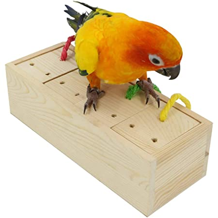 YINGGE Wooden Bird Foraging Feeder Toys, Intelligence Toys for Medium and Large Parrots Sun Conures, Caique, Cockatoo, African Grey, Macaws, Amazon