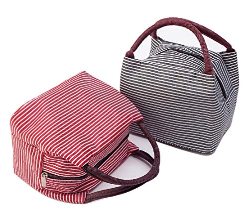 BIGWISH Insulated Lunch Bag Reusable Cute Lunch Container for Girl Oxford Cloth Material Pack of 2Pcs
