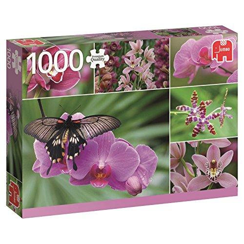 Jumbo- Orquídeas, Puzzle de 1000 Piezas (618354)