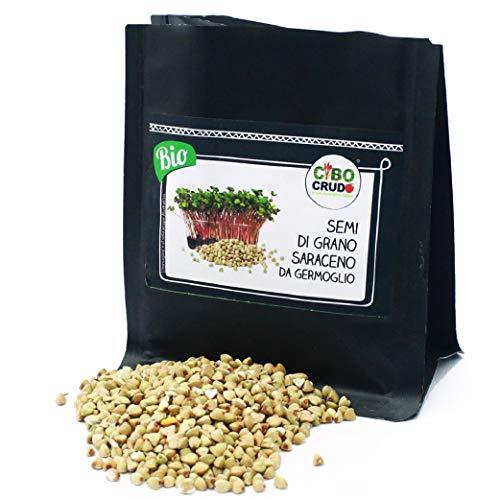 CiboCrudo Semi di Grano Saraceno Biologici da Germoglio Crudi, Raw Organic – 125gr – Chicchi di Grano Saraceno, Ricchi di Proteine e Sali Minerali, Etichette in Italiano