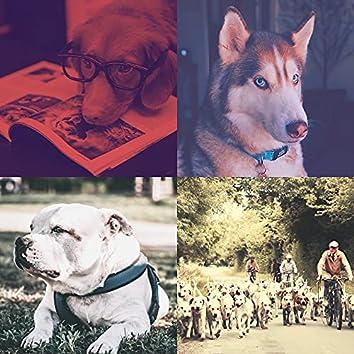 Выгул собак - Фоновая Музыка