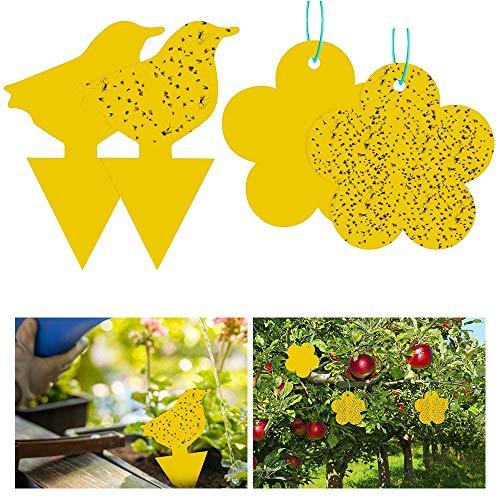 Vegena Fruchtfliegenfallen Gelbe Klebrige Fallen Mückenfallen Killer für Drinnen Draußen Zimmerpflanzen Mücken Pilzmücken (48 Stück)
