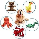 PEHOST Hund Seil Spielzeug Animal Design Baumwolle Seil Hundespielzeug Welpen Spielen Kauen und Training (Set von 5)