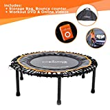 FIT BOUNCE PRO – Best Seller – Faltbares, Qualitativ Hochwertiges Leise Gummiseil-Mini-Trampolin...