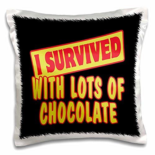 3dRose Ich überlebte mit viel Schokolade Survival Stolz und Humor Design-Pillow Fall, 16von 40,6cm (PC 118468_ 1)