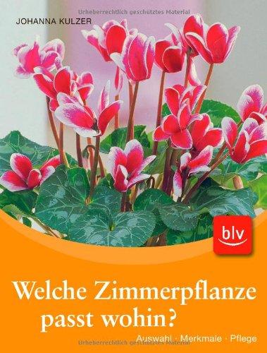 Welche Zimmerpflanze passt wohin?-Set (Buch + Aquasticks): Auswahl - Merkmale - Pflege